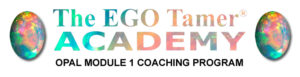 Opal Module 1 Coaching Program at The EGO Tamer Academy