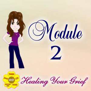 Module 2 Lessons for Healing Your Grief: Picking Up the Pieces